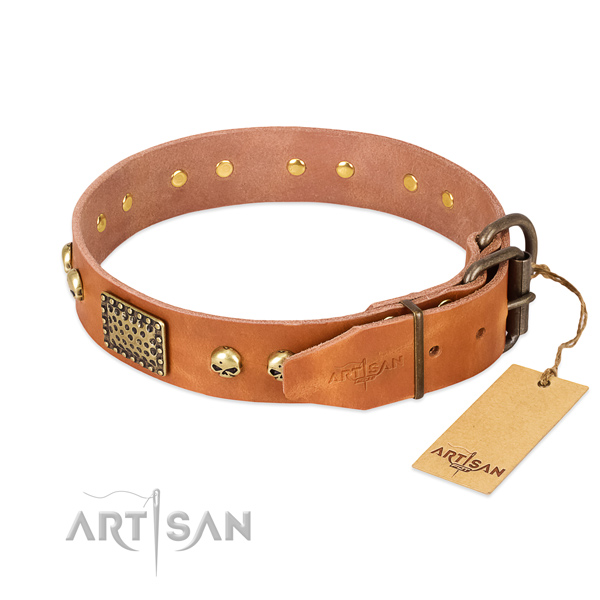 Rust resistant buckle on easy wearing dog collar