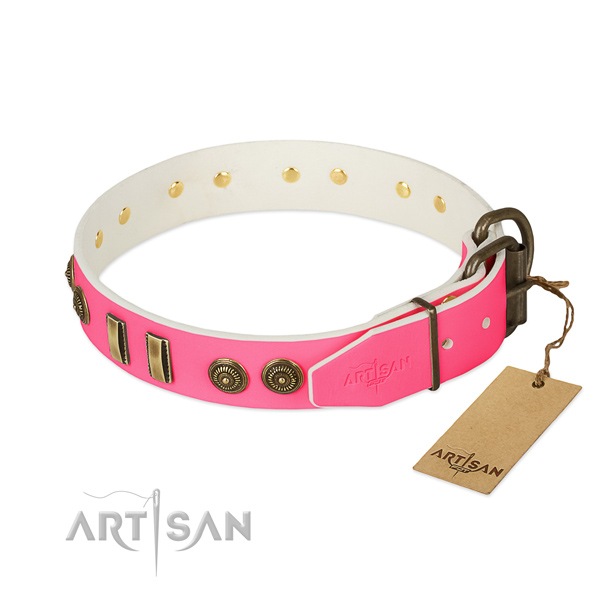 Durable traditional buckle on natural leather dog collar for your four-legged friend