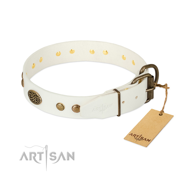 Rust-proof buckle on full grain natural leather dog collar for your dog