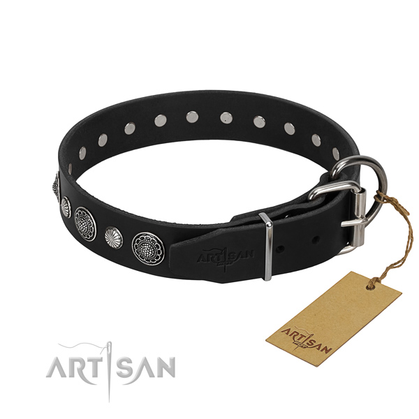 Fine quality full grain natural leather dog collar with fashionable adornments