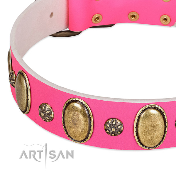 Everyday walking high quality full grain natural leather dog collar with embellishments