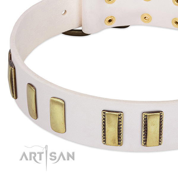 Quality full grain natural leather dog collar with embellishments for daily use