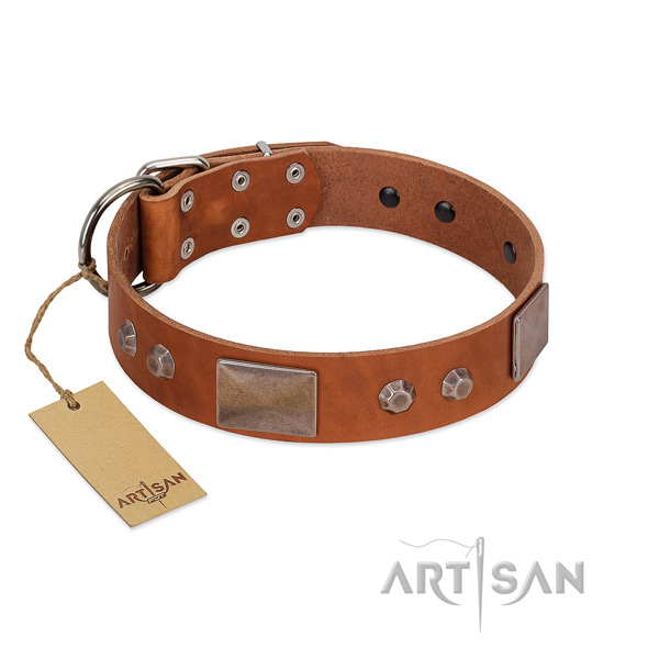 Adjustable genuine leather dog collar with corrosion proof traditional buckle