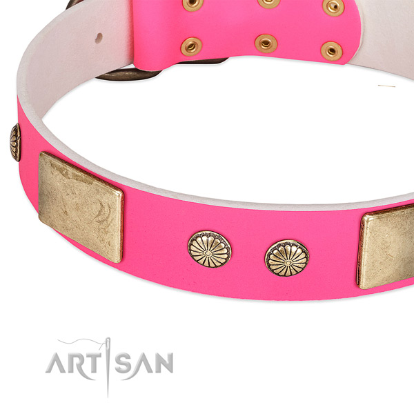 Reliable studs on full grain leather dog collar for your pet