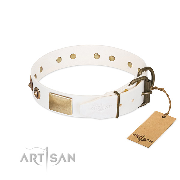 Rust-proof traditional buckle on natural genuine leather dog collar for your dog