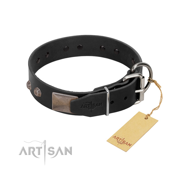 Extraordinary full grain leather dog collar for everyday walking your canine