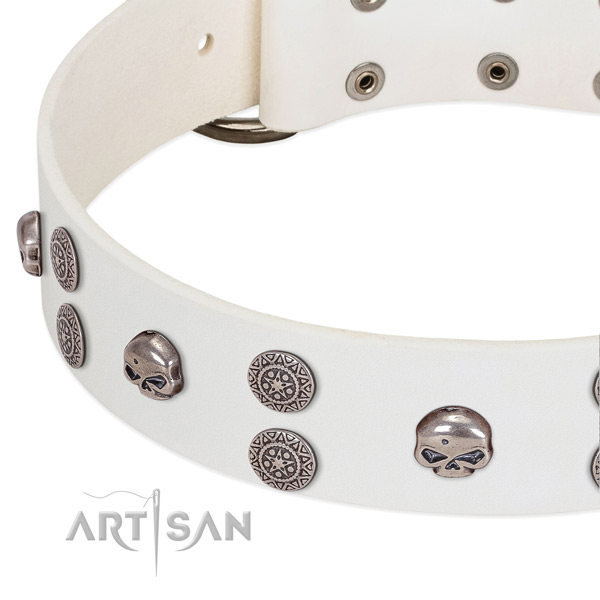Soft natural leather dog collar with exceptional embellishments