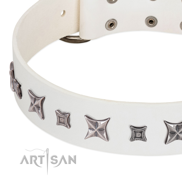Top notch genuine leather collar for your stylish four-legged friend