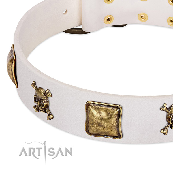 Inimitable full grain natural leather dog collar with reliable embellishments