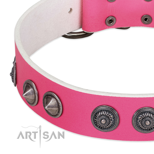 Handmade full grain leather collar with embellishments for your four-legged friend