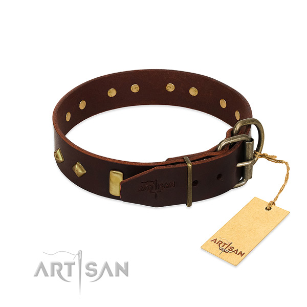 Natural leather dog collar with rust resistant fittings for easy wearing