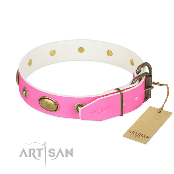 Durable fittings on leather dog collar for your pet