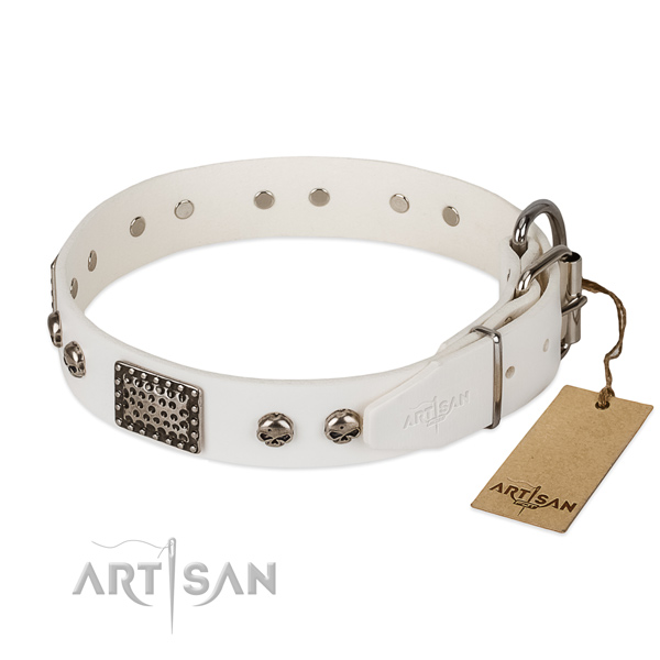 Durable hardware on stylish walking dog collar