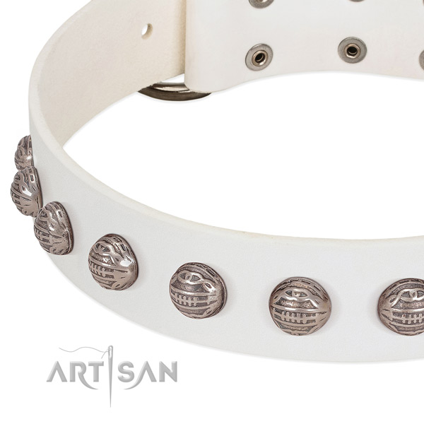 Unusual genuine leather dog collar with durable embellishments
