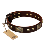 """Magic Amulet"" Brown Leather German Shepherd Collar with Skulls and Plates"