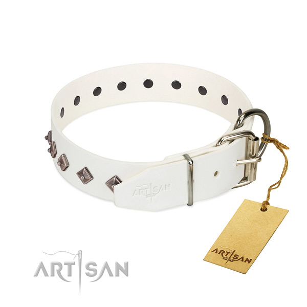 Unusual embellishments on genuine leather collar for easy wearing your pet