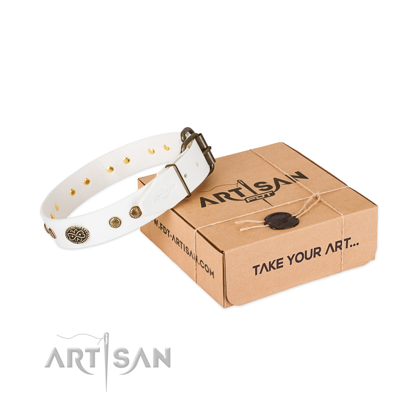 Reliable embellishments on full grain genuine leather dog collar for your doggie