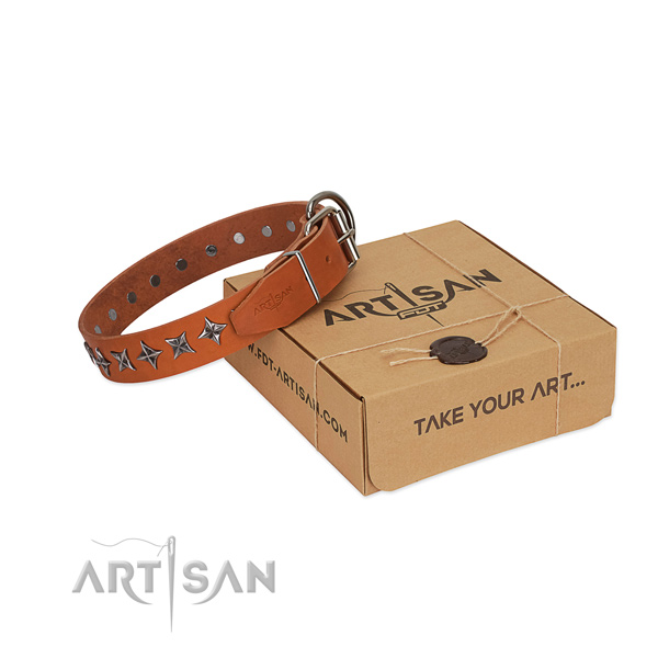Comfy wearing dog collar of strong full grain natural leather with embellishments