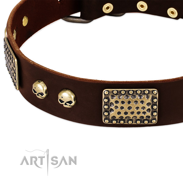 Corrosion resistant adornments on full grain natural leather dog collar for your pet