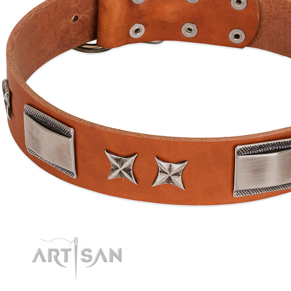 Top notch full grain leather dog collar with rust resistant hardware