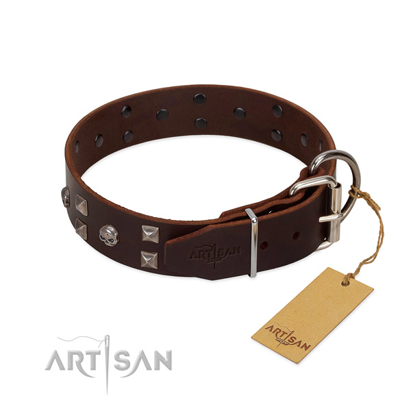Impressive collar of full grain genuine leather for your dog