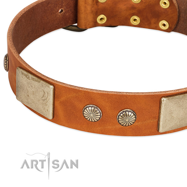 Corrosion resistant adornments on natural genuine leather dog collar for your canine