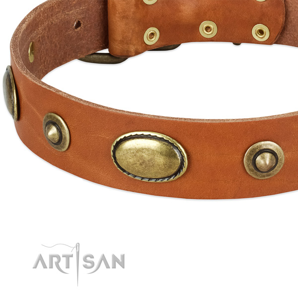 Strong D-ring on natural leather dog collar for your pet