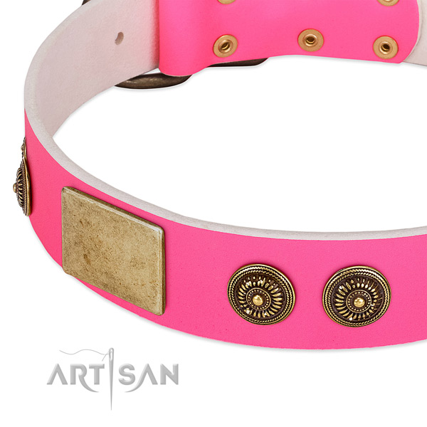 Unusual dog collar made for your handsome doggie