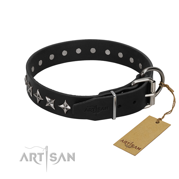 Basic training embellished dog collar of top notch full grain leather