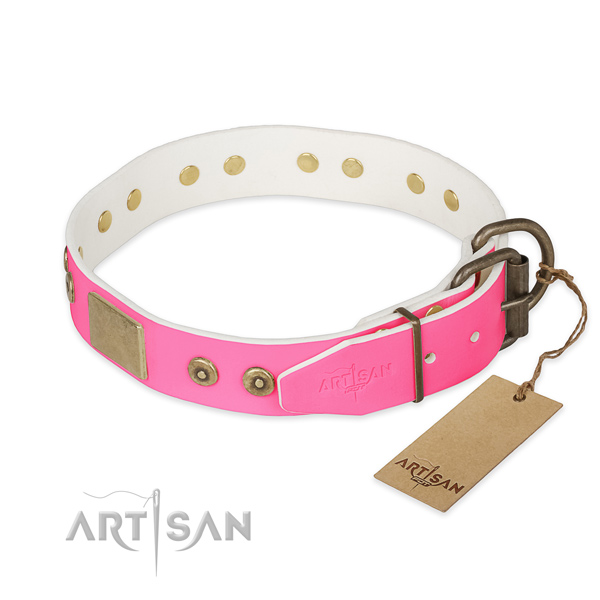 Corrosion proof fittings on easy wearing dog collar