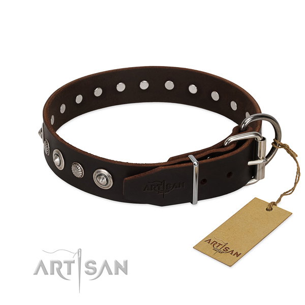 Quality leather dog collar with stylish design adornments