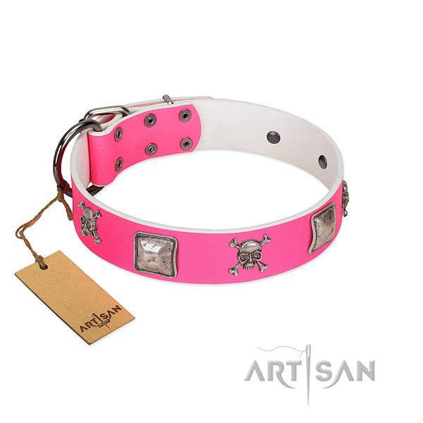 Exceptional genuine leather collar for your impressive canine