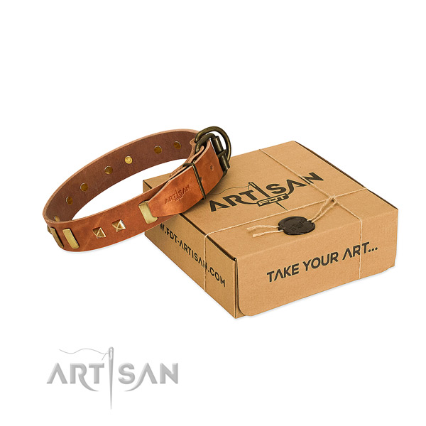 Quality genuine leather dog collar with embellishments for daily use