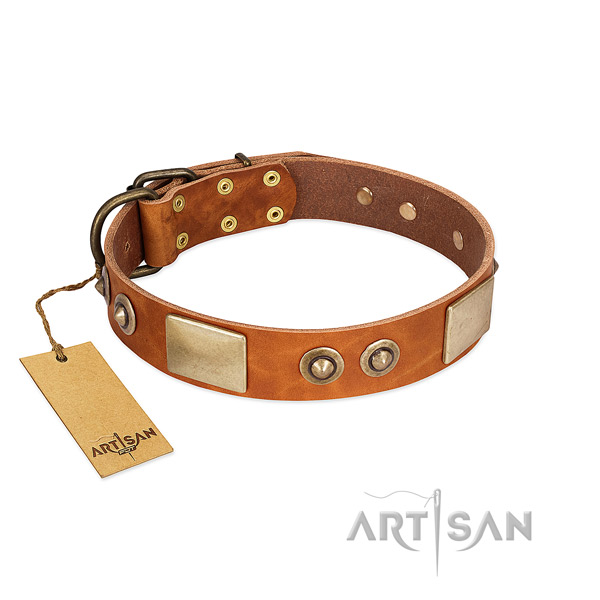 Easy adjustable full grain leather dog collar for walking your four-legged friend