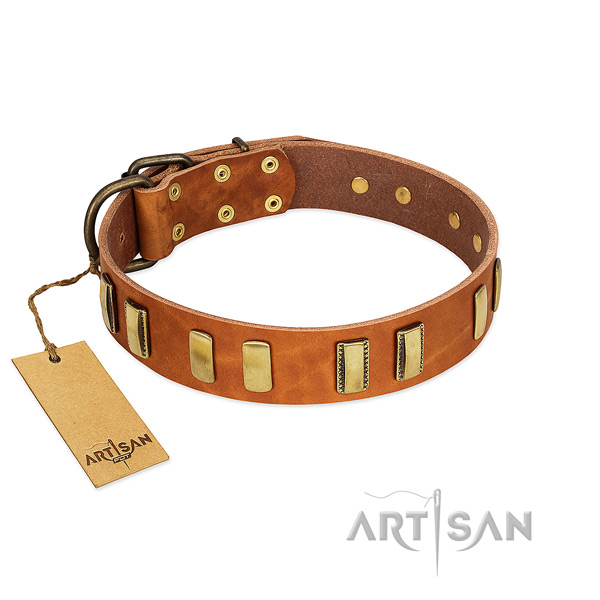 Flexible genuine leather dog collar with rust resistant hardware