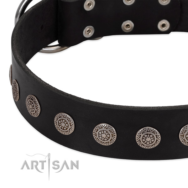 Amazing leather collar with decorations for your doggie