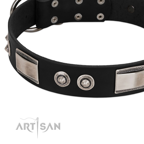 Inimitable collar of leather for your lovely pet
