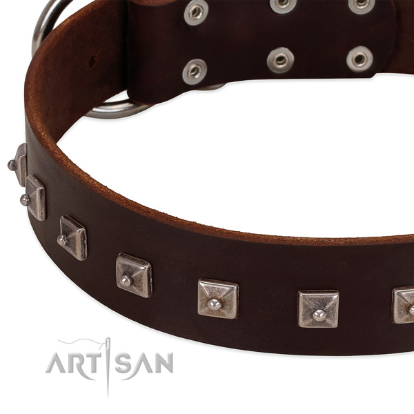 Reliable full grain leather collar with embellishments for your canine