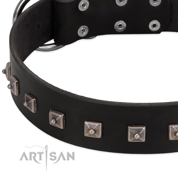 Quality genuine leather collar with embellishments for your canine