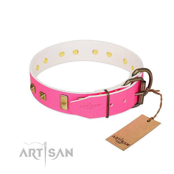 Natural genuine leather dog collar with rust-proof embellishments