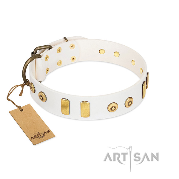 Full grain leather dog collar with amazing studs for handy use