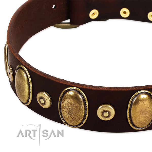 Soft to touch leather dog collar with adornments for comfy wearing