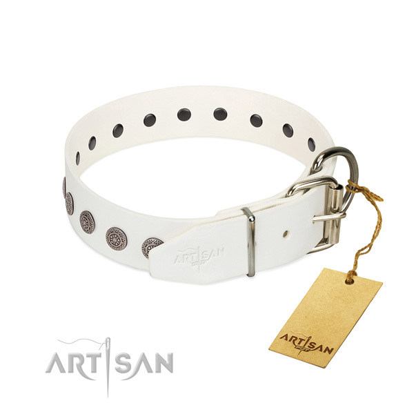 Inimitable studs on genuine leather collar for daily walking your pet