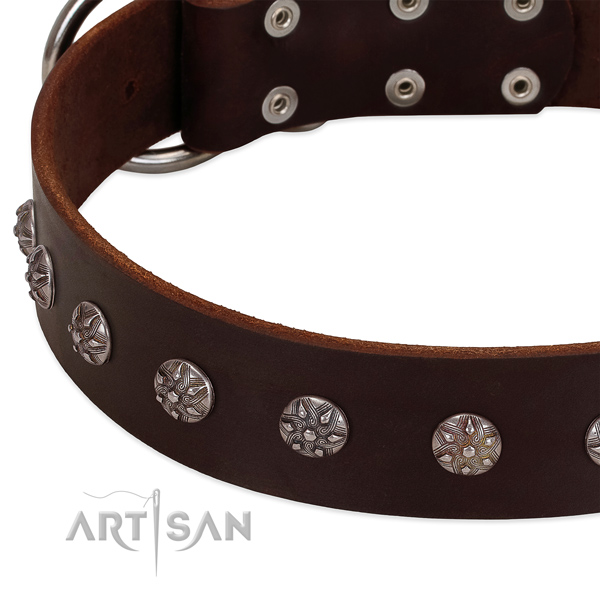 Flexible genuine leather dog collar with decorations for your doggie