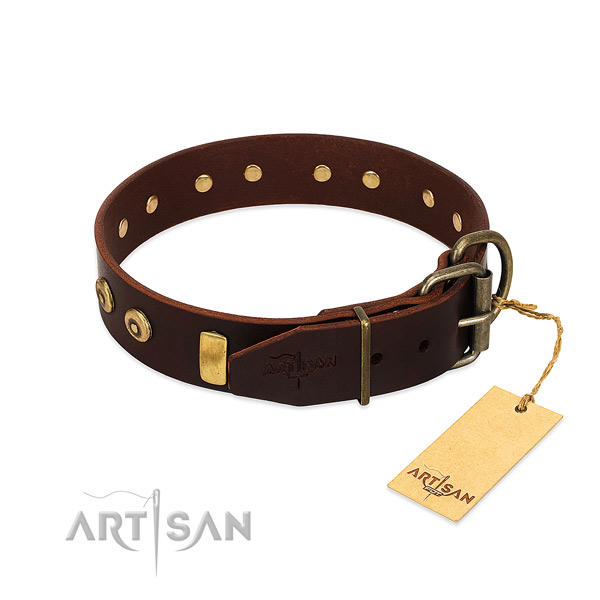 Best quality genuine leather dog collar with remarkable embellishments