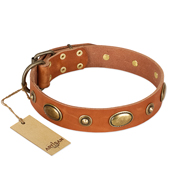 """Visual Magic"" FDT Artisan Tan Leather German Shepherd Collar for Daily Activities"