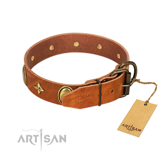 Top notch genuine leather dog collar with stylish adornments