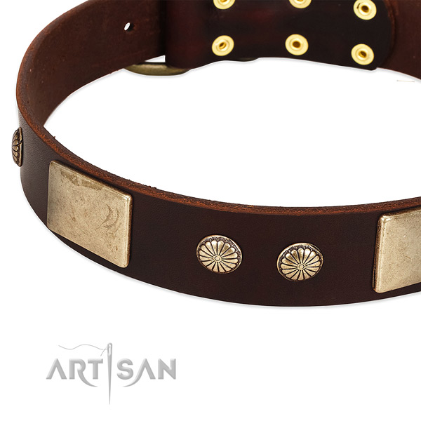 Corrosion proof hardware on full grain natural leather dog collar for your four-legged friend