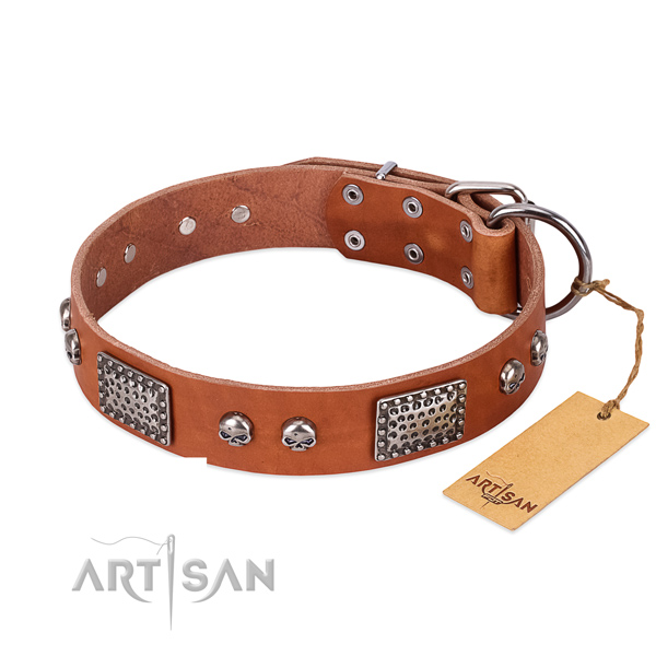 Adjustable full grain natural leather dog collar for daily walking your dog