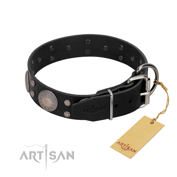 Top notch full grain natural leather dog collar with decorations for your beautiful dog